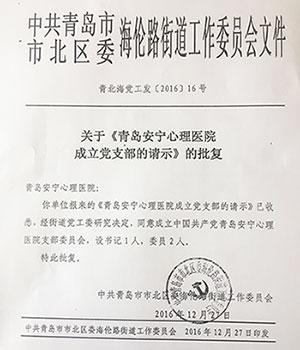 好消息!青岛安宁心理医院党支部正式成立